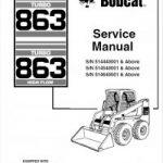 Bobcat-863